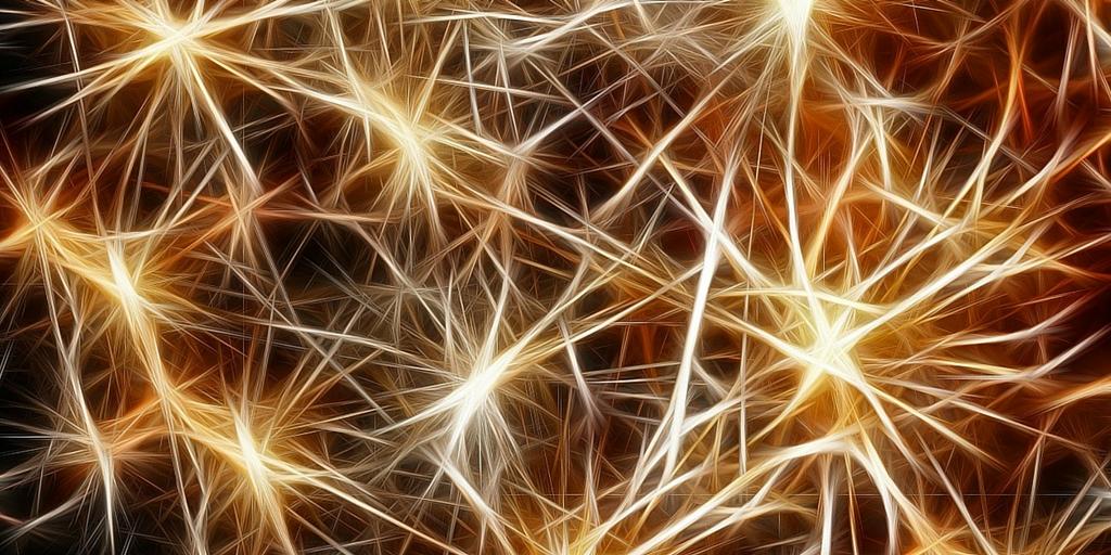 besser-lernen-gehrin-synapsen